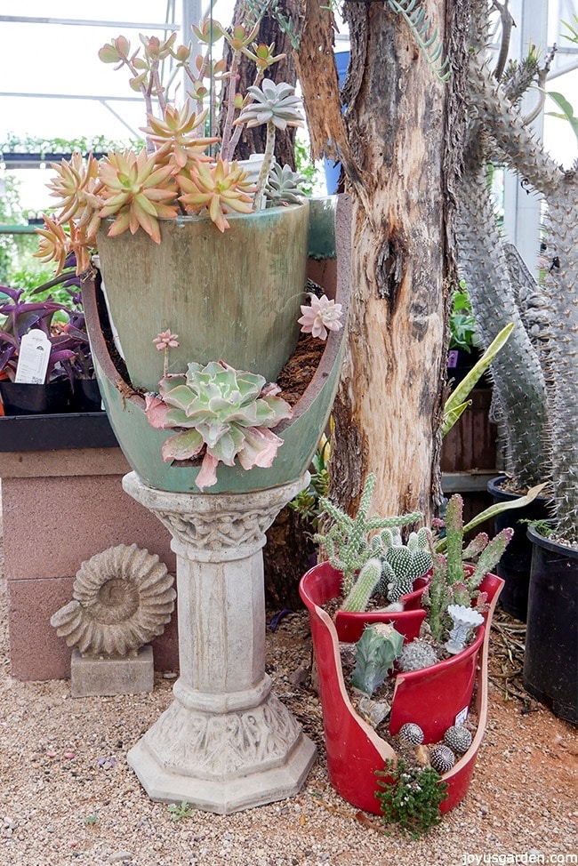 What To Do With Broken Plant Pots