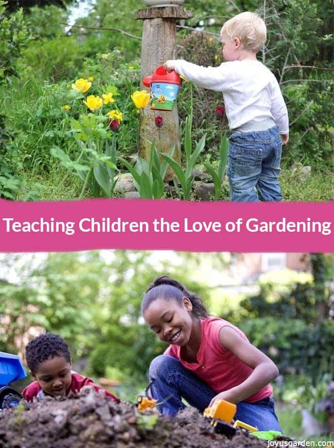 Teaching Children The Love of Gardening