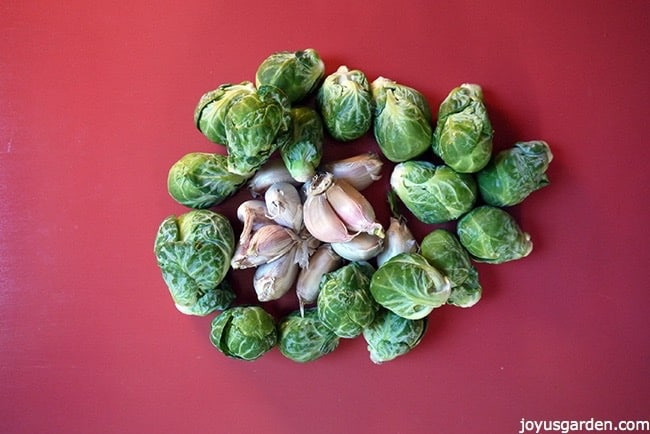 Garlic and brussel sprouts