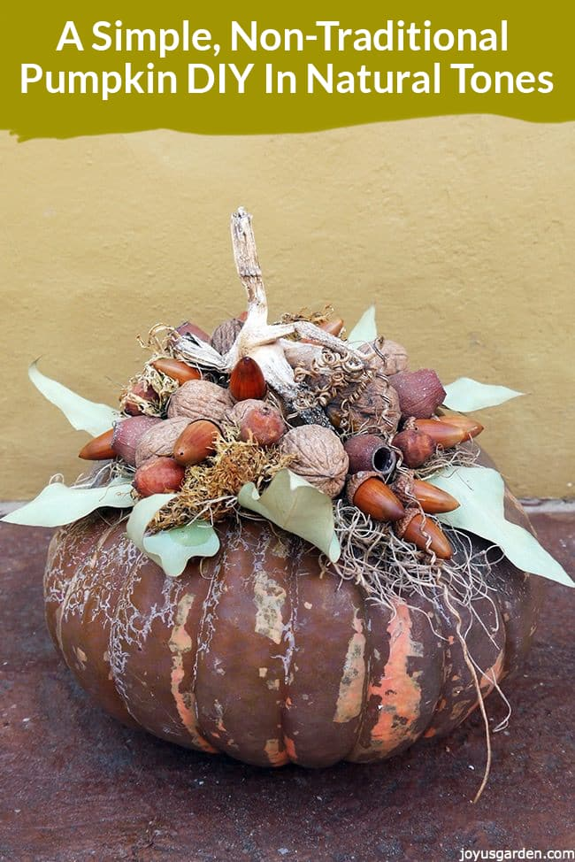 a brown pumpkin is decorated with nuts, pods & dried leaves the text reads A Simple, Non-Traditional Pumpkin DIY In Natural Tones