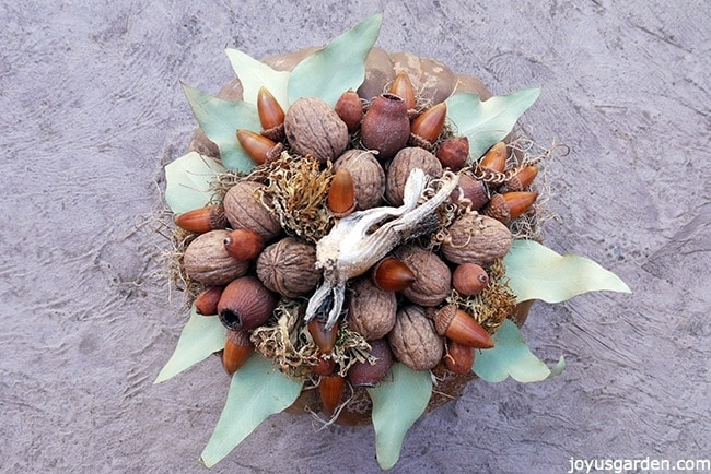 looking down on walnuts, pods, acorns, dried leaves glued onto spanish moss on top of a brown pumpkin