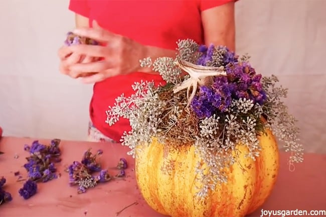 Purple accent flowers are added to the pumpkin
