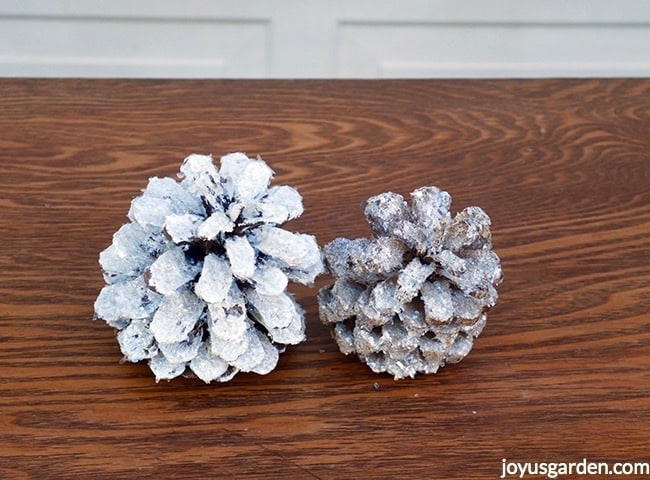 2 pine cones sit next to each other. 1 is painted white & the other is bleached. Both have crystal glitter on them