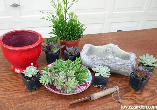 A Red Pot Small Log Cement Planter Succulents Succulent Cuttings Sit On