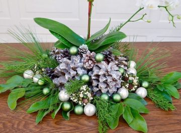 A small white orchid is decorated for the holidays below it reads A Touch Of Elegance- White Blooming Plants For Christmas_new