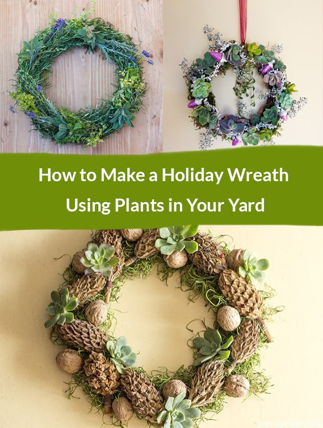 a collage with 3 wreaths made with plants collected from the garden the text readsHow to Make a Holiday Wreath Using Plants in Your Yard