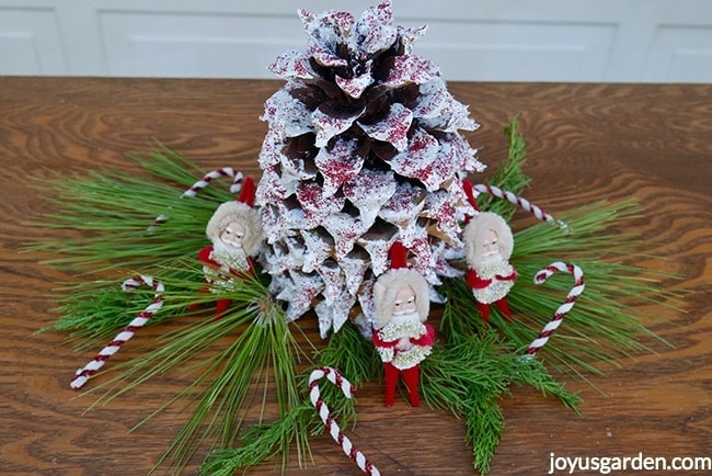 Large coulter pine cone is painted white with crystal & red glitters. Greens, candy canes & santas surround the cone
