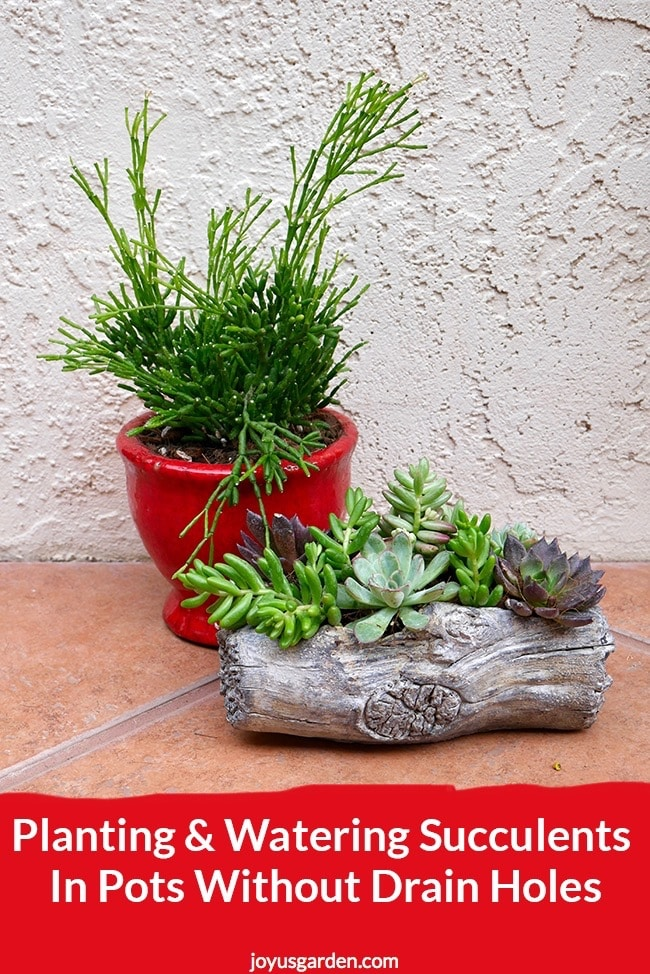 A Red Small Pot Planted With Succulents Next To It Theres A Cement Log Planter