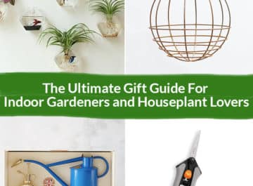 The Ultimate Gift Guide For Indoor Gardeners and Houseplant Lovers Header colllage