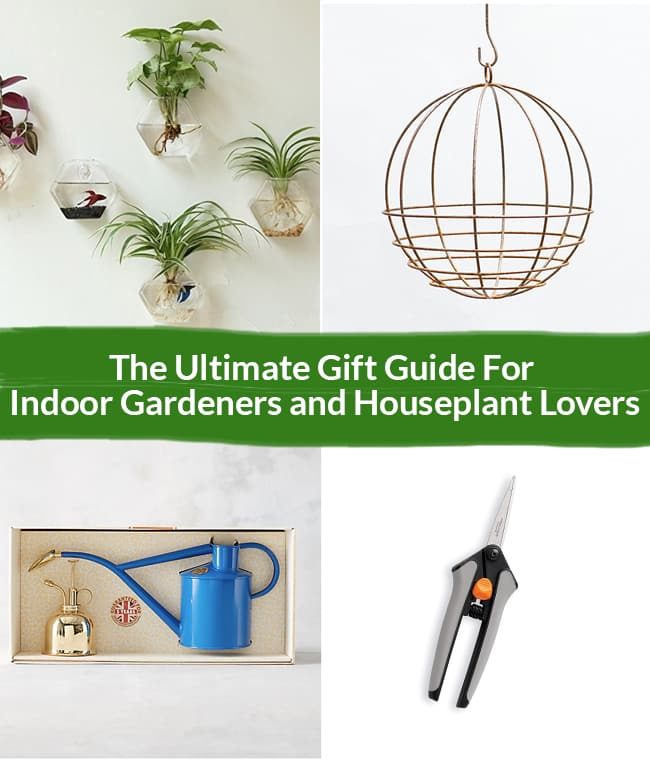 a collage with gifts to give houseplant gardeners the text reads The Ultimate Gift Guide For Indoor Gardeners and Houseplant Lovers Header colllage