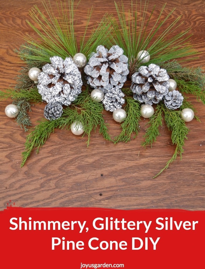 glittered silver pinecones sit on evergreen branches surrounded by small pearlescent balls the text reads Shimmery, Glittery Silver Pine Cone DIY.