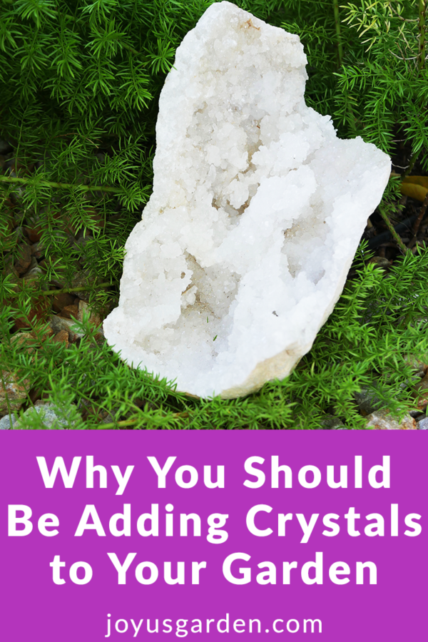 a large crystal geode rests on a foxtail fern in a garden the text reads why you should be adding crystals to your garden