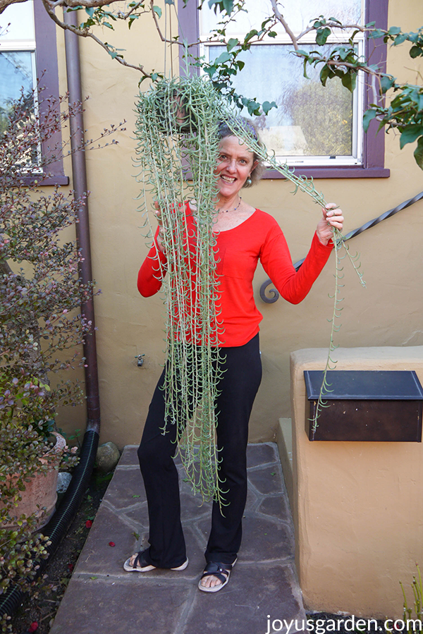 nell foster in a red shirt & black pants is standing behind a string of fishhooks succulent with long trails
