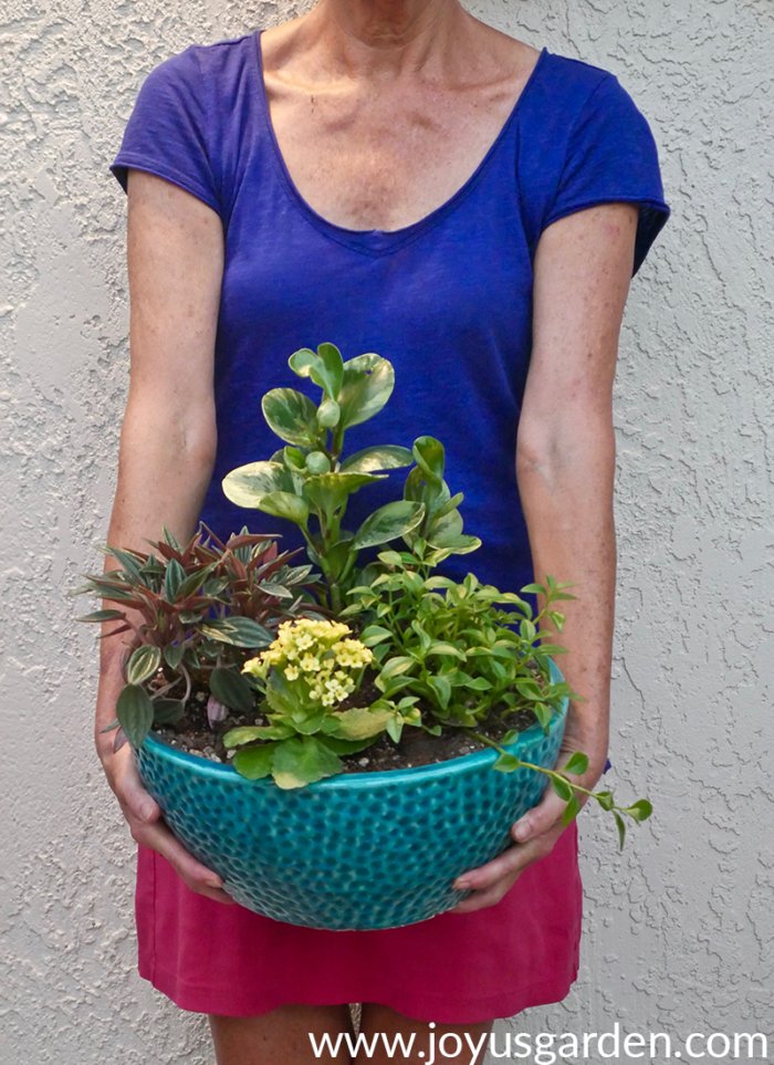 a dish garden in a turquoise glazed ceramic pot is held by a woman in a blue top & pink shirt
