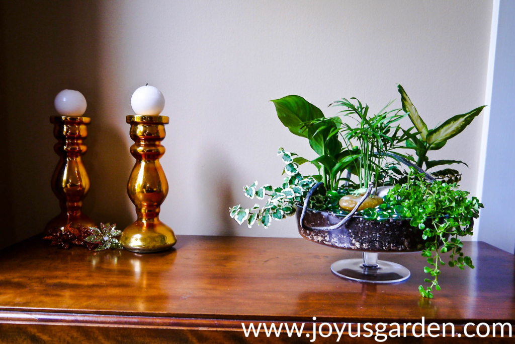 a dish garden with a variety of houseplants in a footed glass bowl sits on a table next to orange glass candlesticks
