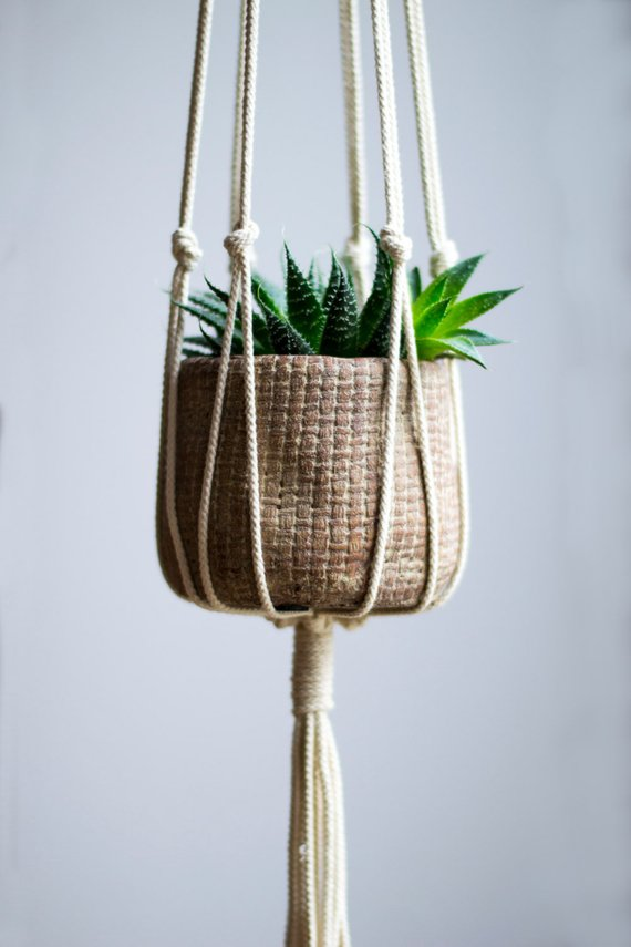 a small plant hanger with a succulent in it