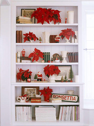 a white bookcase styled with red poinsettias, books, santas, trees & other christmas ornaments