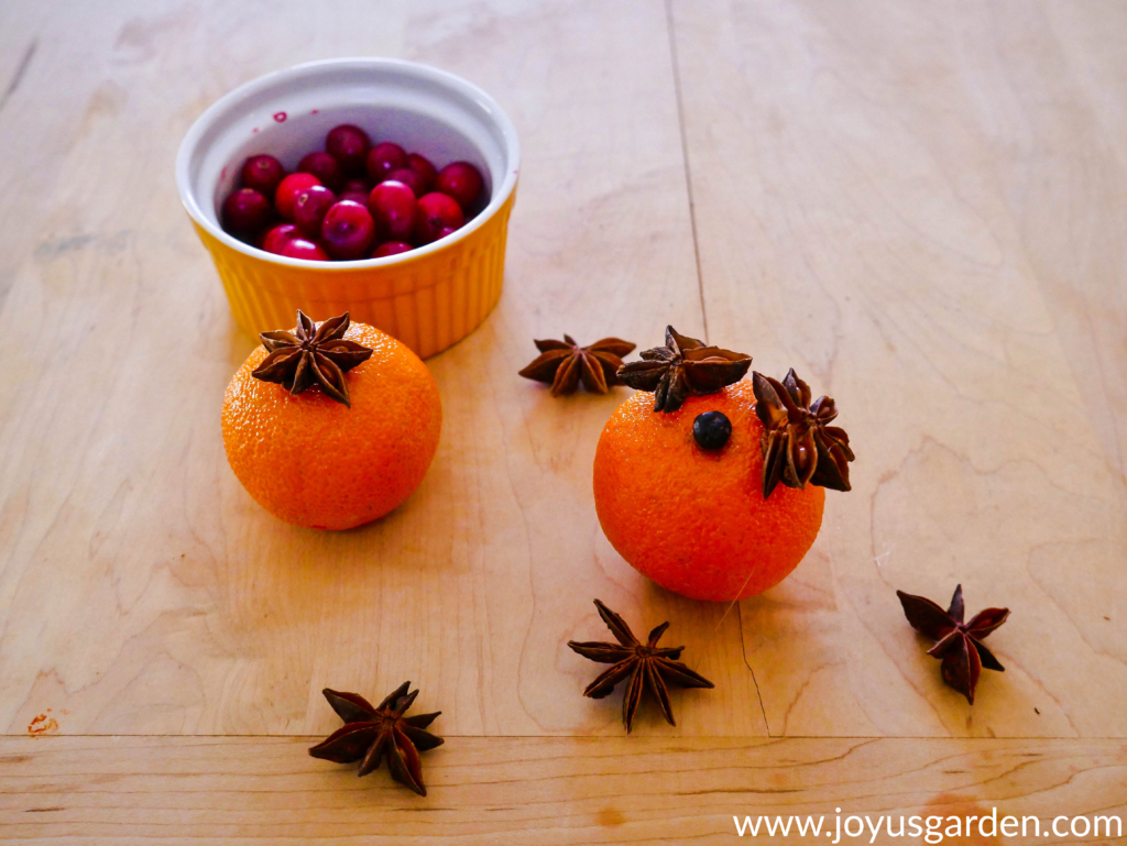 2 clementine cuties with star anise on the top sit on a cutting board next to a small bowl with cranberries