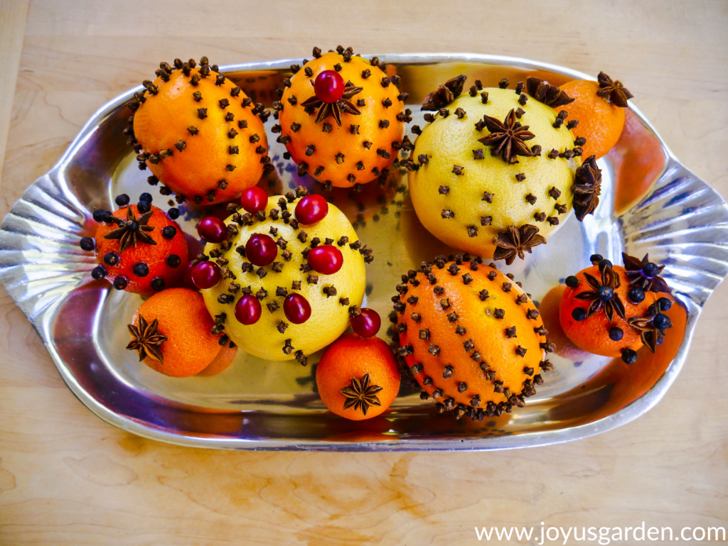 close up of citrus fruits adorned with whole cloves star anise cranberries & juniper berries on a silver tray