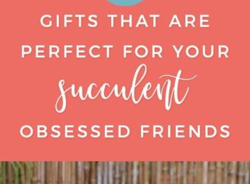 Do you have a friend that simply adores succulents? Well, if you're interested in buying them a present that'll remind them of their favorite plants, we've got a succulent gift guide just for you.