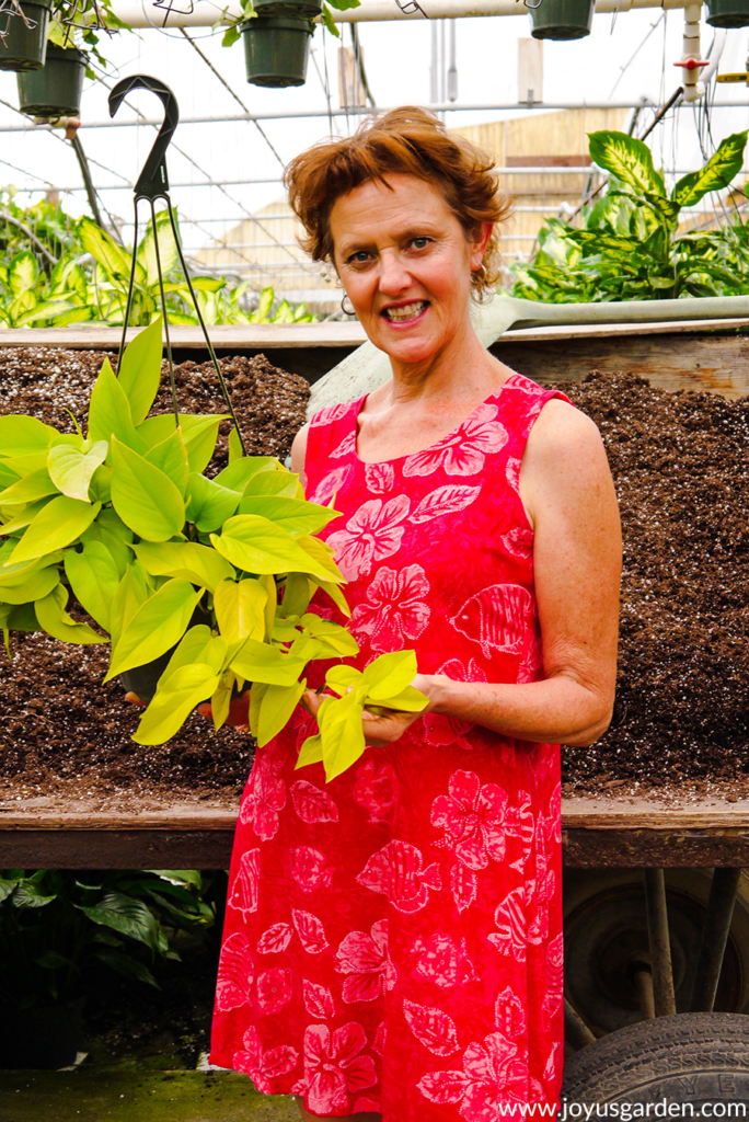nell foster of joy us garden holds a chartreuse neon pothos