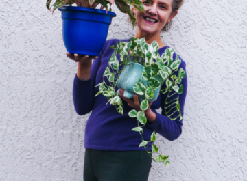 nell foster with joy us garden is holding an aglaonema & a trailing pothos