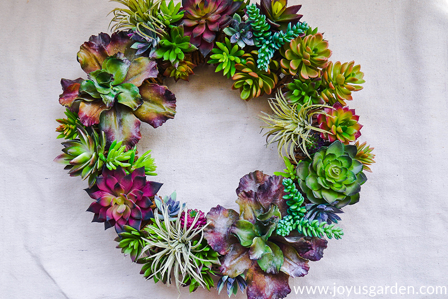 close up of a colorful faux succulent wreath with a variety of succulents & 3 air plants