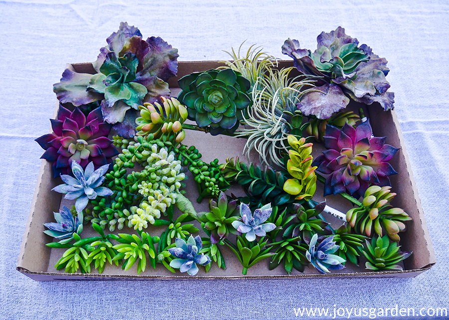 close up of a variety of faux succulents in a low cardboard box