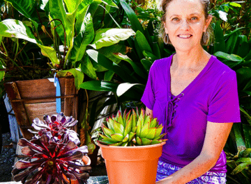 Nell Foster with joy us garden holding a succulent in a terra cotta pot with another succulent behind her