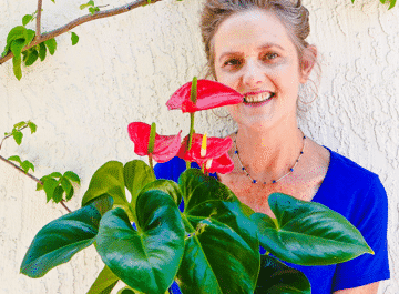 nell foster of joy us garden holds an anthurium plant with red flowers