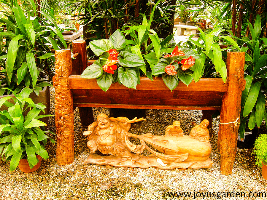 a bali themed  display includes tropical plant & anthuriums with red flowers