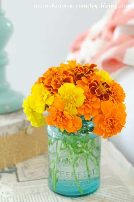 a small mason jar filled with small yellow orange & red marigolds