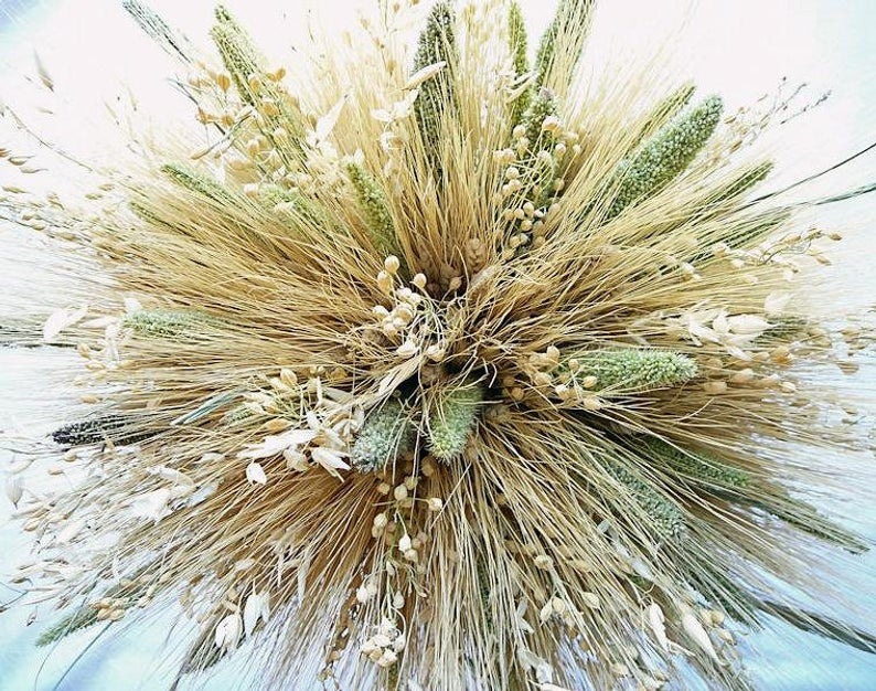 close up of a tan & green mixed fall wheat bundle