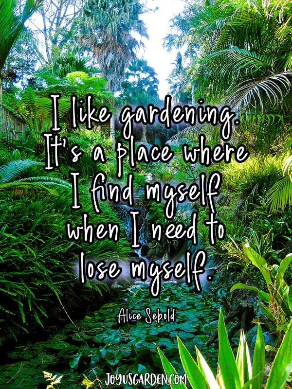 a tropical garden with the quote I like gardening it's a place where i find myself when i need to lose myself