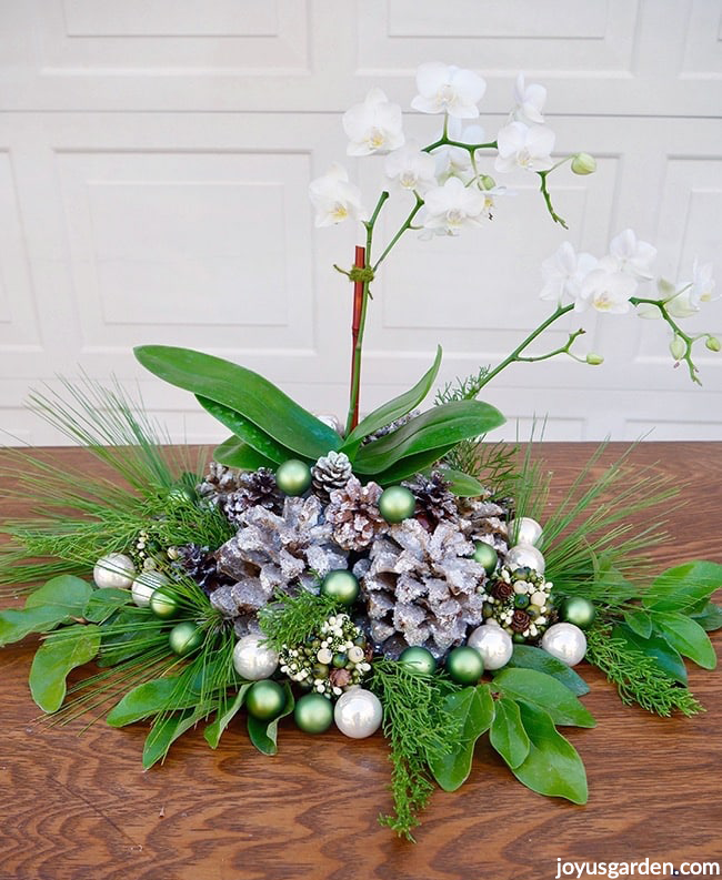 a white phalaenopsis orchid christmas decorations with glitter cones glass balls & fresh greens