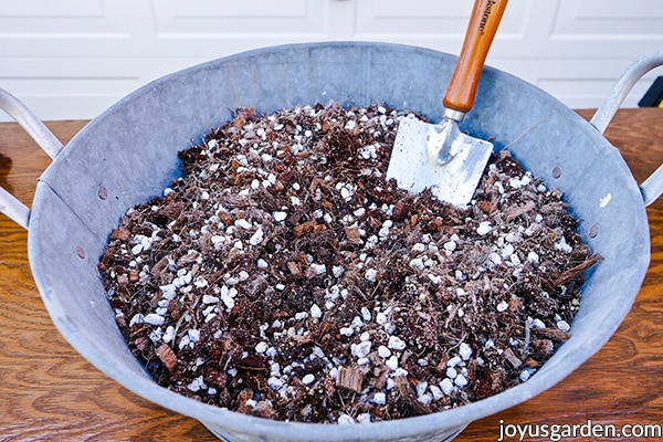 a tin bowl full of succulent & cactus mix with a trowel in it
