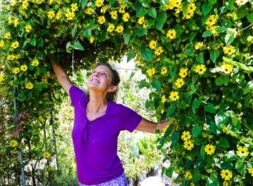 Vines + Climbing Plants