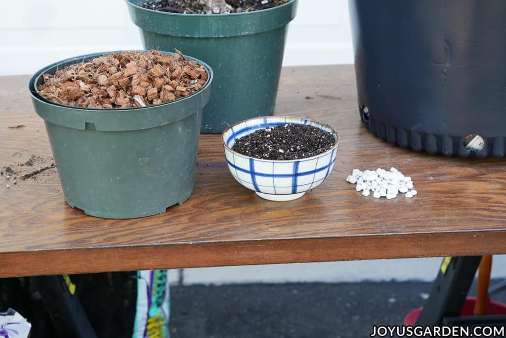 various materials for repotting plants sit on a work table