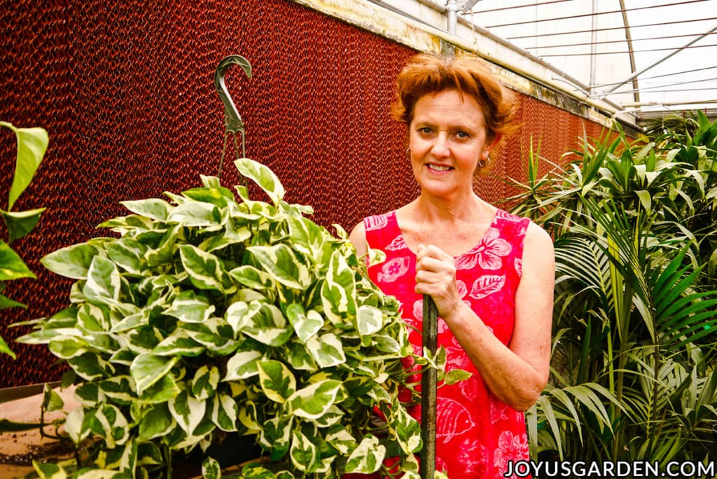 nell foster stands next to a green & white pothos glacier