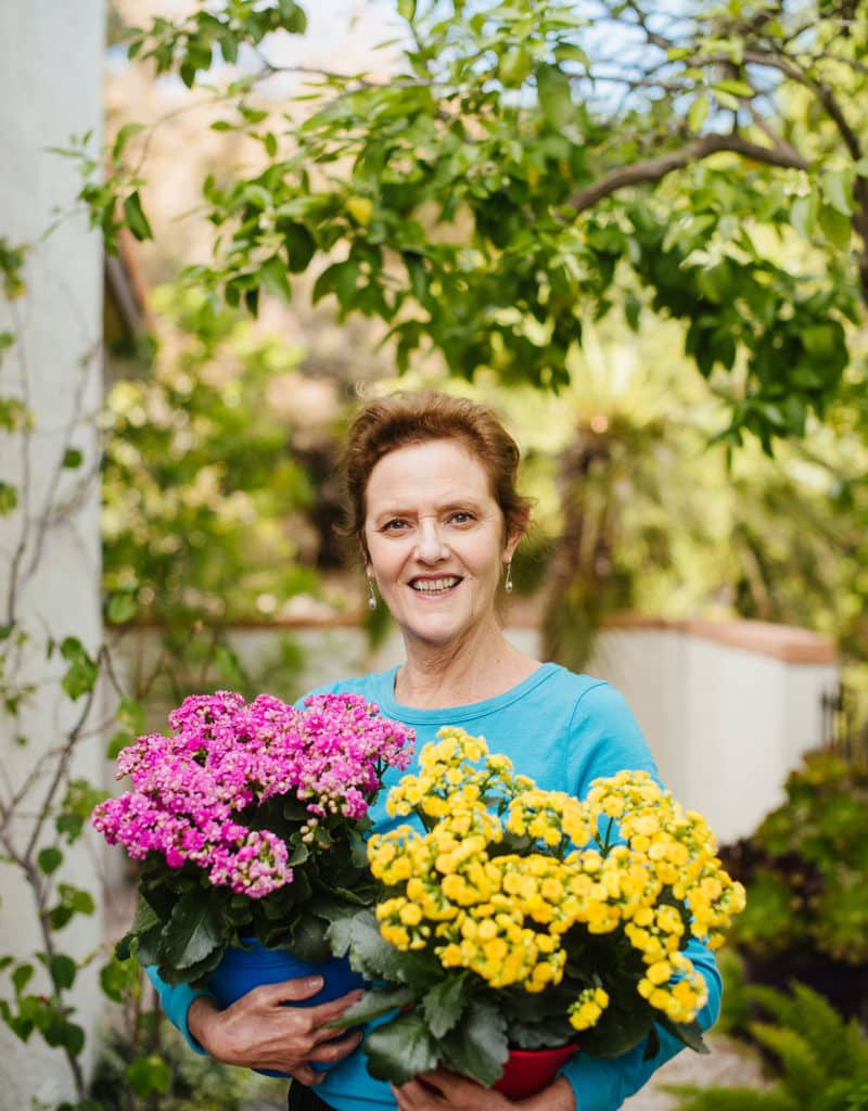nell foster holds a pink calandiva plant & a yellow calandiva plant in her garden