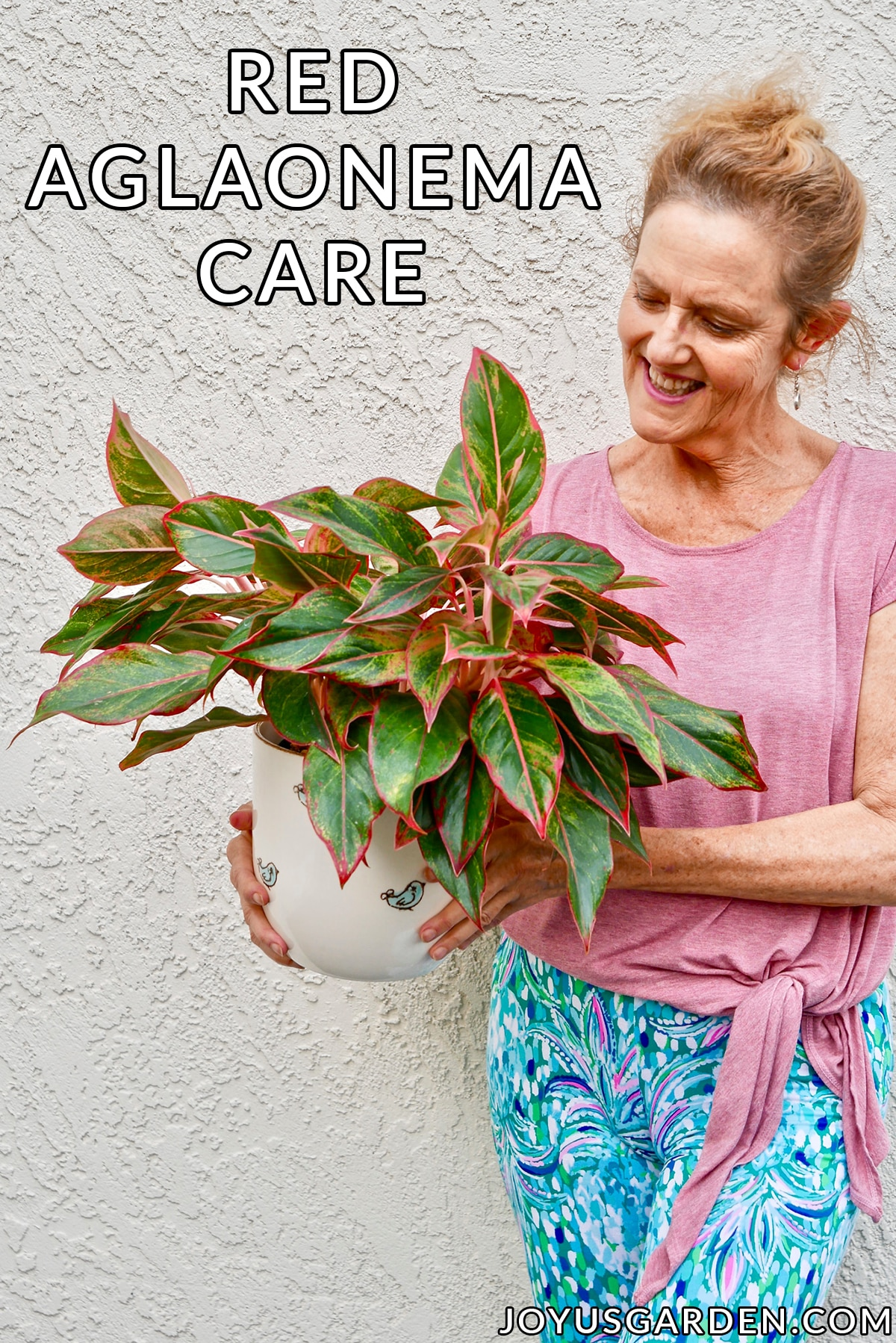 nell foster holds an aglaonema siam aurora red aglaonema in a ceramic pot the text reads red aglaonema care