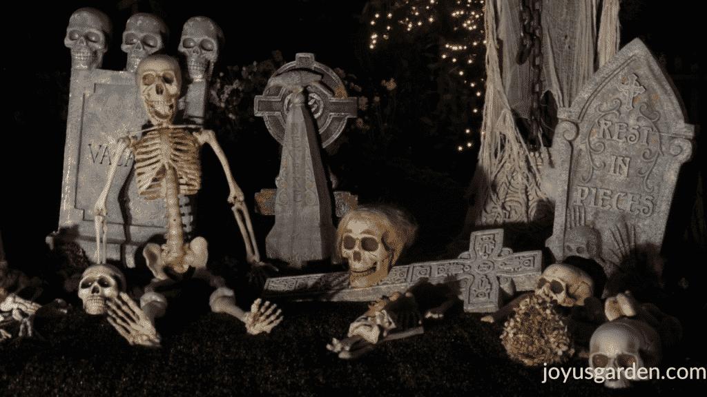 a halloween graveyard display including skeletons, bones, tombstones & skulls after dark