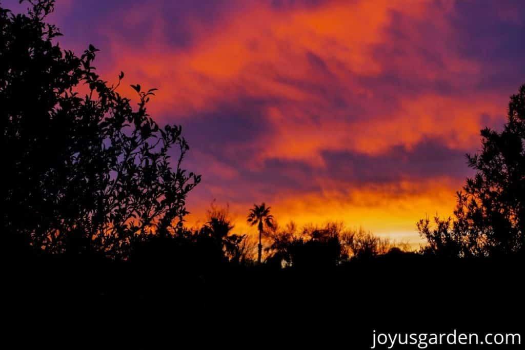 a beautiful december sunset in tucson az