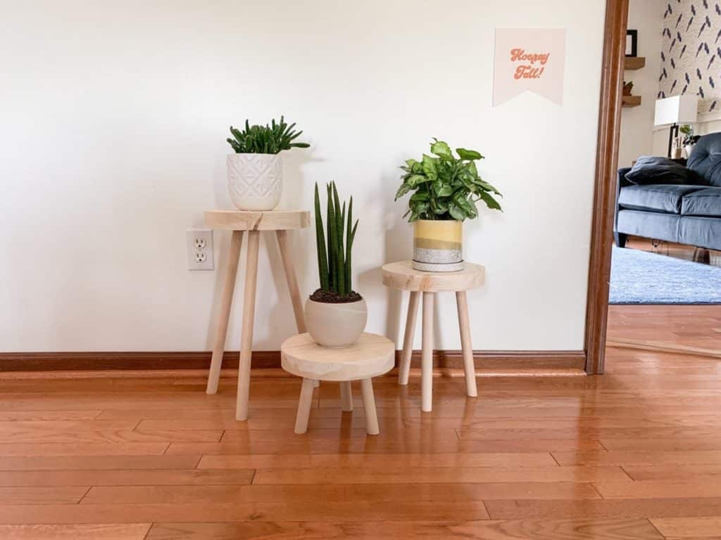 three natural wood stool plant stands