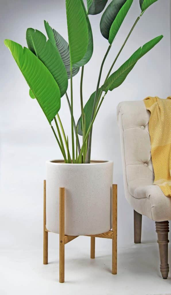 a white plant pot in a natural wood mid century modern stand