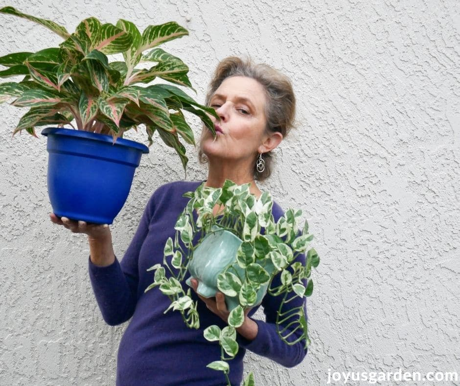 nell foster holds a pothos & an agalonema houseplant she is kissing the aglaonema