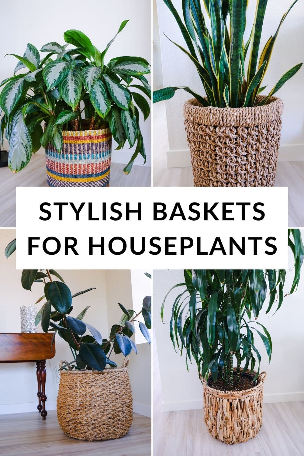 a collage showing 4 large houseplants in different baskets the text reads stylish baskets for houseplants