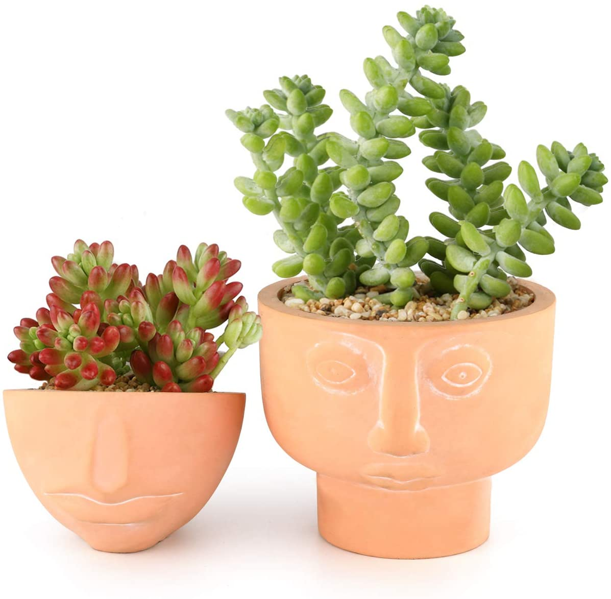 Male Head Design Succulents Plant Pot Home Desktop Decor Planter Gifts