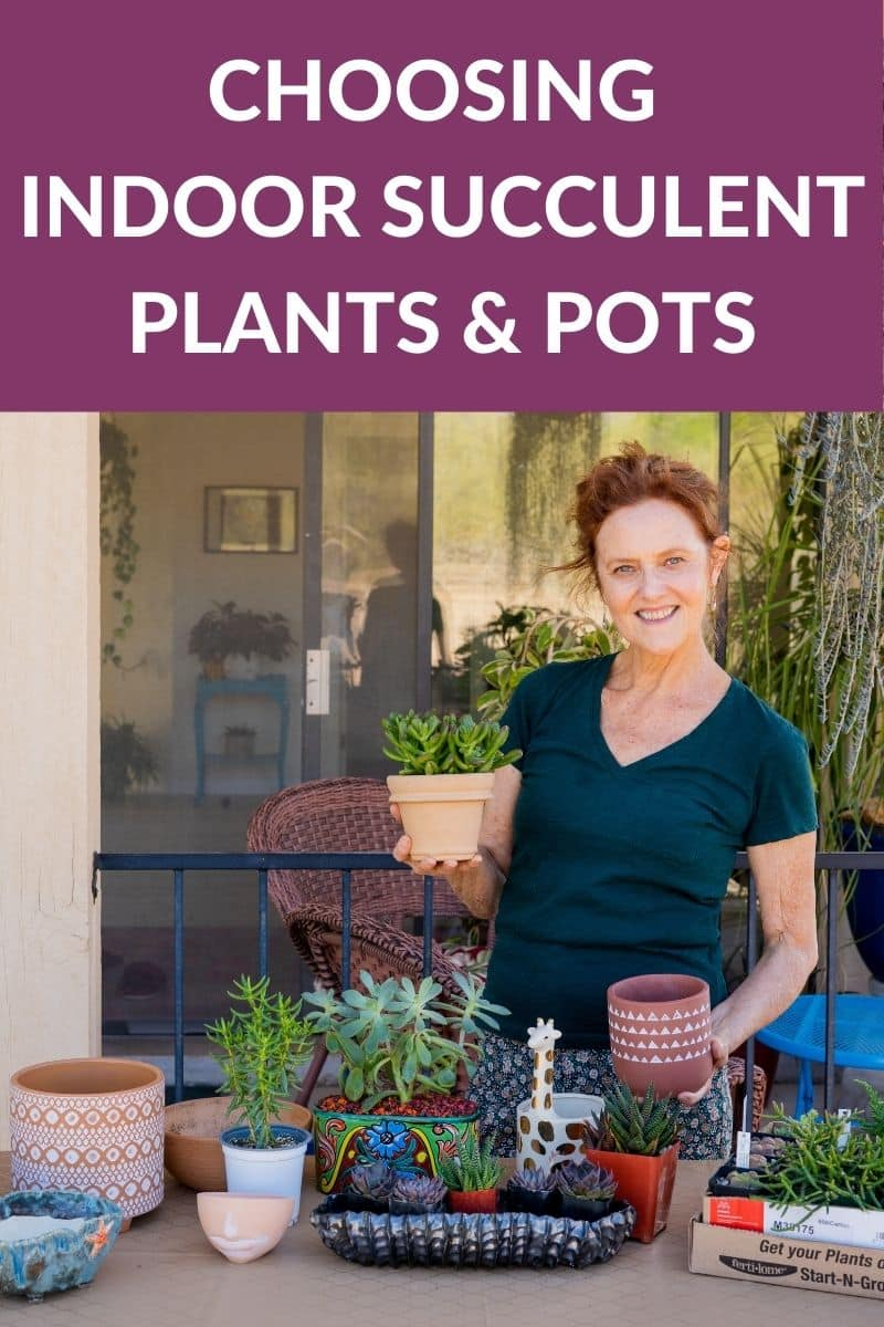nell foster at her work table with succulent plants & pots the text reads choosing indoor succulent plants & pots