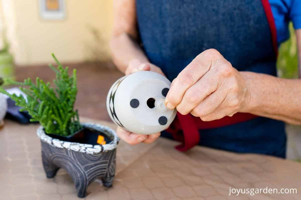 2 hands are taking a plastic drain hole plug out of a pot a small succulent in a small pot sits nearby